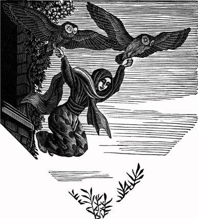 The Owls' Parachute