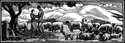 Shepherd & Shepherdesses