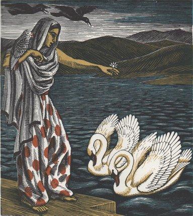 The Princess & the Swans colour