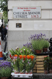 A Flower Stall in Chelsea; 2009