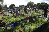 A plant sale; 2009