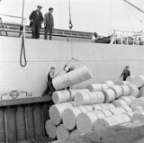 Rolls of paper being unloaded in Surrey commercial docks; 1953