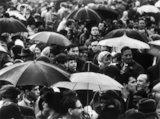 A crowd huddled underneath umbrellas in the rain: 1961
