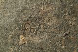 Roman lead alloy ingot