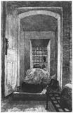 Stone Breaker: 1884
