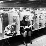 Crufts dog show, Olympia: 1964