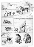 Sir Charles Warren tracked by dogs: 1886-1888