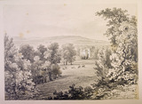 A view of Addington Palace set within parkland with cattle grazing in the foreground
