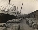 Millwall Dock; 1919