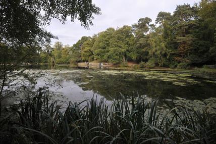 Keston Ponds; 2009