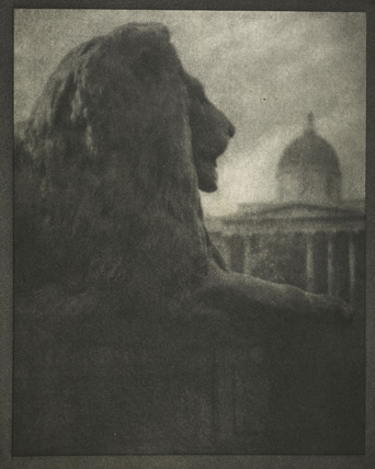 Lion statue in Trafalgar Square: 1900-1909