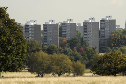 A view across Richmond Park; 2009