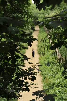 Parkland Walk; 2009