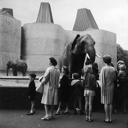 Visitors to the elephant enclosure at London Zoo: c.1960