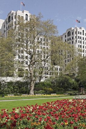 The Victoria Embankment Gardens; 2009