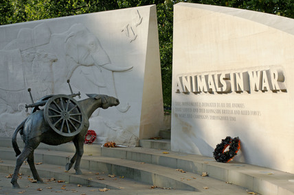 Animals at War Memorial; 2009