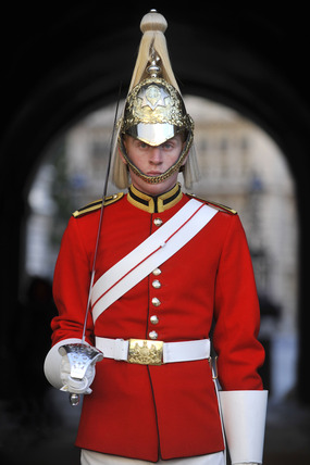 A lifeguard on pararade in Horse Guards ; 2010