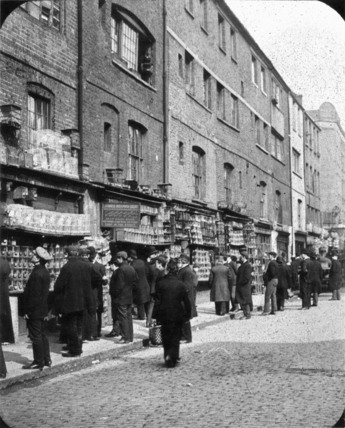 Sunday bird fair in Sclater Street; c.1902