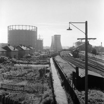 Backyard gardens of houses alongside a railway line