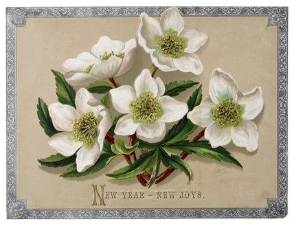 Victorian Christmas Card: 1880