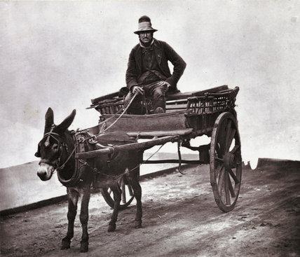 Black Jack:c.1877