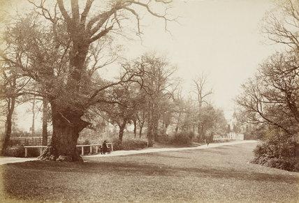 Hadley Ward; c.1870