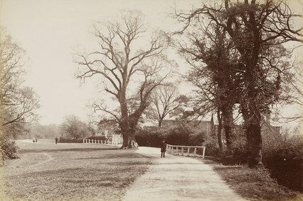 Hadley Wood, Barnet, c. 1870.
