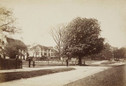 A view of Hadley; 1870