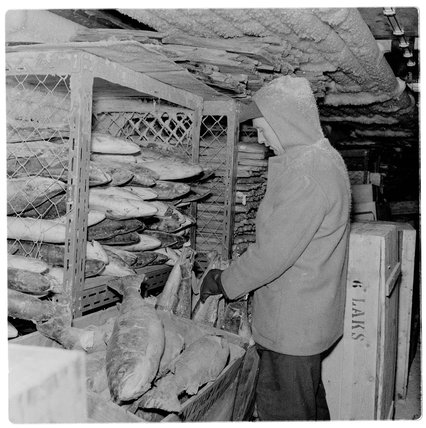 The Coldstore at Billingsgate Market: 1958