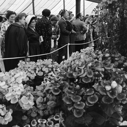 The Chelsea Flower Show; 1964