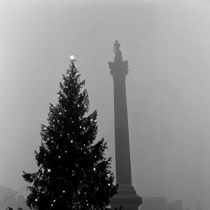 Trafalgar Square, Christmas 1955