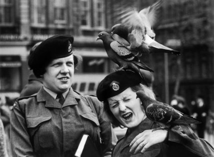 Women in uniform: 1961