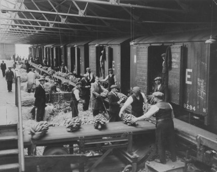 West India Docks c.1935: Bananas being loaded onto rail trucks
