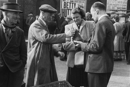 The Sunday pet and livestock market on Club Row near Petticoat Lane: 1950