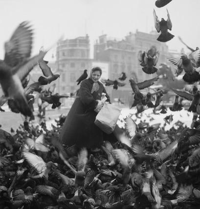 Feeding the pigeons in Trafalgar Square: 20th century