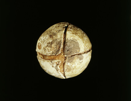 Post-medieval leather tennis ball