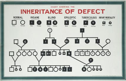 Inheritance of defect, Eugenics Education Society: 1926