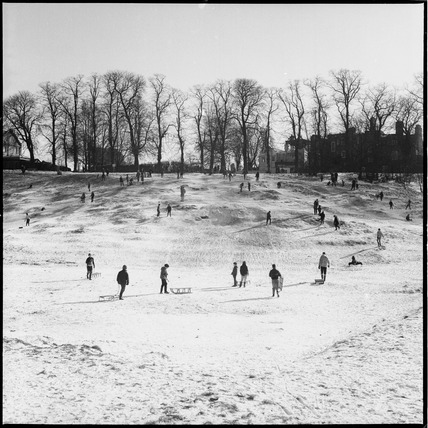 Sledging on Hampstead Heath: 1969