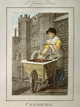 Cherries, St. James's Place: 1804