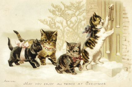 Cat Christmas card: c 1880