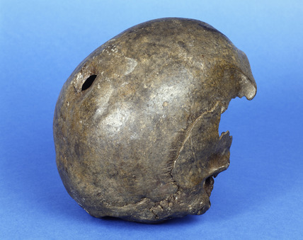 A Neolithic adult male skull