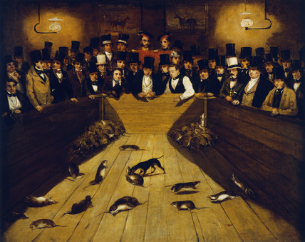 Rat-Catching at the Blue Anchor Tavern, Bunhill Row, Finsbury: 19th century