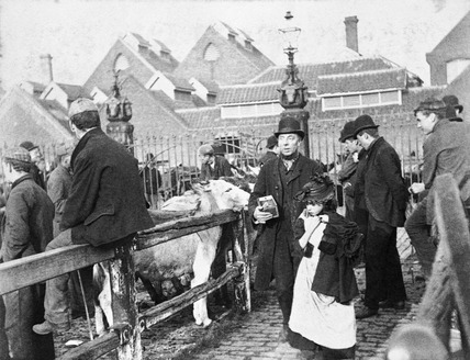 A blind man at the Caledonian Road Cattle Market: 19th century