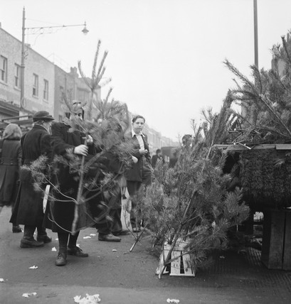 Christmas tree sale: 1957