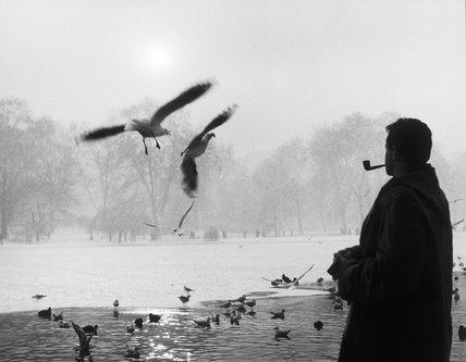 St. James Park :1962