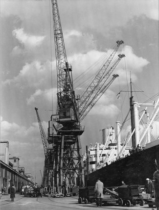 Discharging cargo Royal Albert Dock: 20th Century