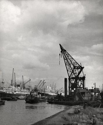 Royal Albert Dock: 1951