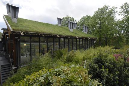 The CUE Building, Horniman Museum; 2009