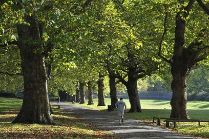Southwark Park; 2009