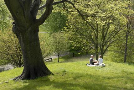 People enjoying Greenwich Park; 2009